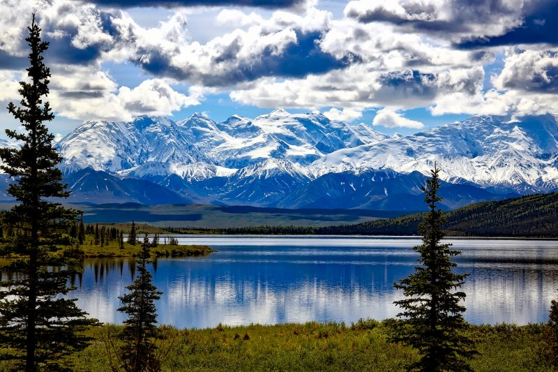 denali-national-park-1733313_1920