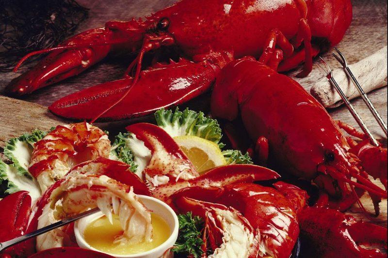 lobster-2370691_1920