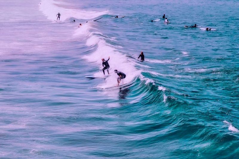 Surfowanie na Venice Beach